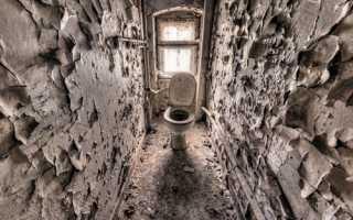 Облицовка туалета плиткой своими руками