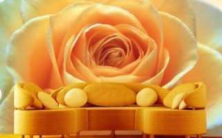 Чарующие розы фотообои в интерьере
