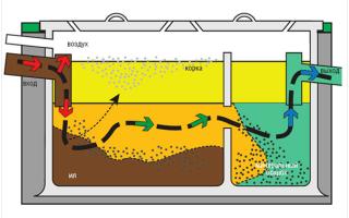 Почему выгребная яма не впитывает воду и как решить проблему