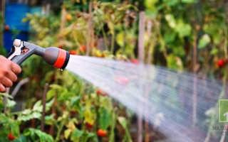 Можно ли поливать огород и газон водой из скважины