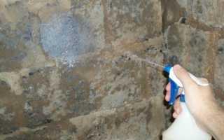 Как выполняется грунтовка перед шпаклевкой стен