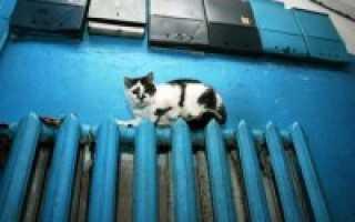 Температура помещения при отоплении не дотягивает до нормы: что делать?